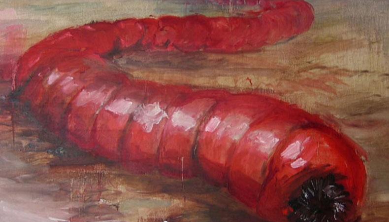 Der Mongolische Todeswurm