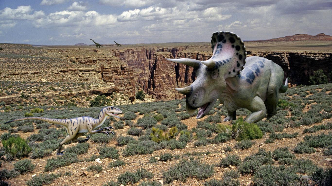 Horn-Saurier gegen Krallen-Killer