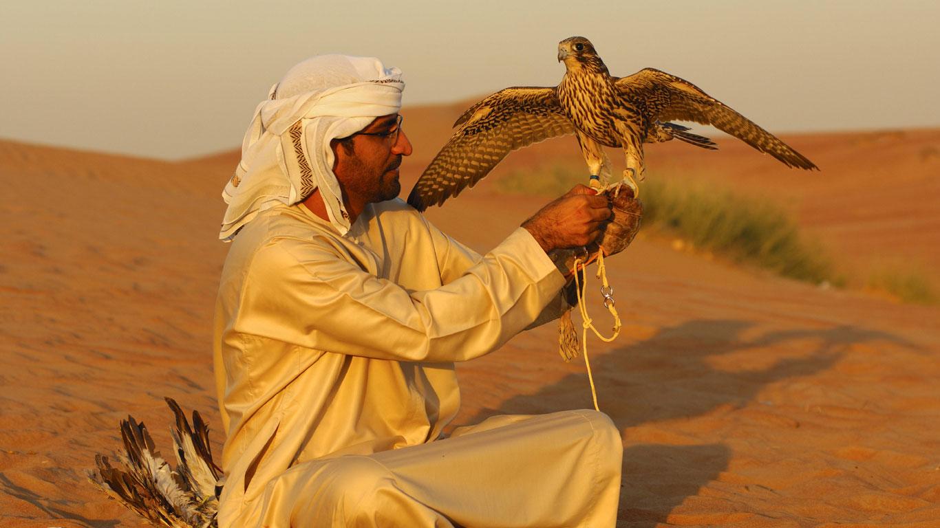 Falken und Menschen