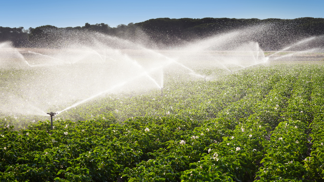 Wassersparender Anbau