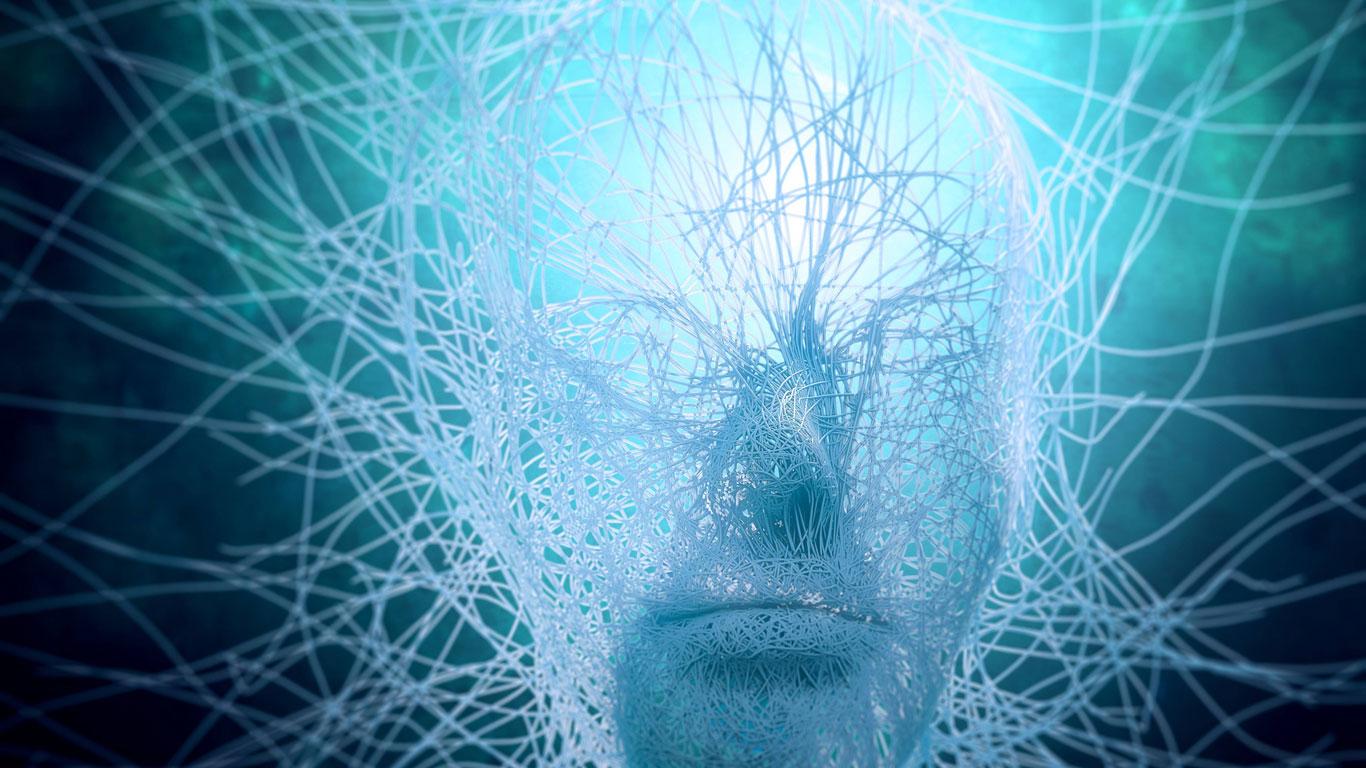 Können Algorithmen intelligent sein?