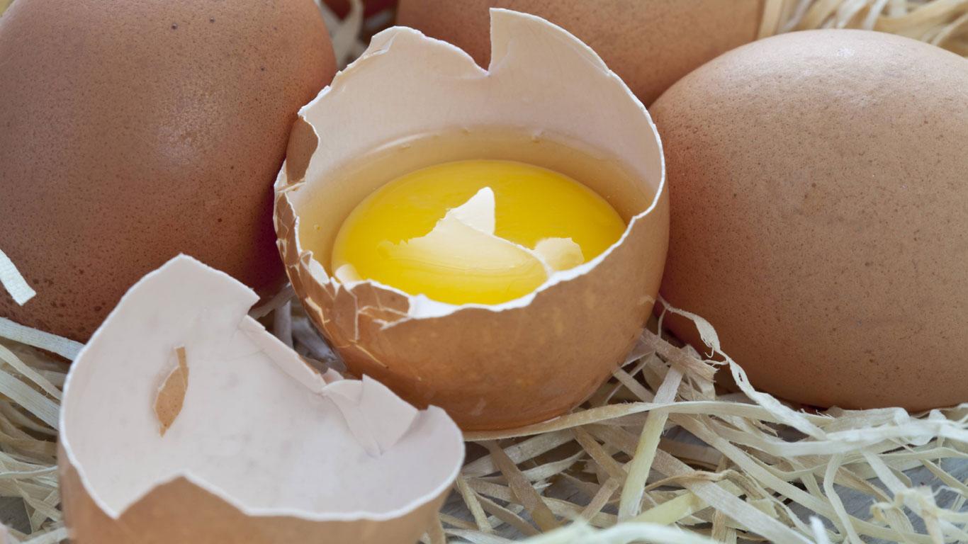 Woher kommen die roten Punkte im Ei?