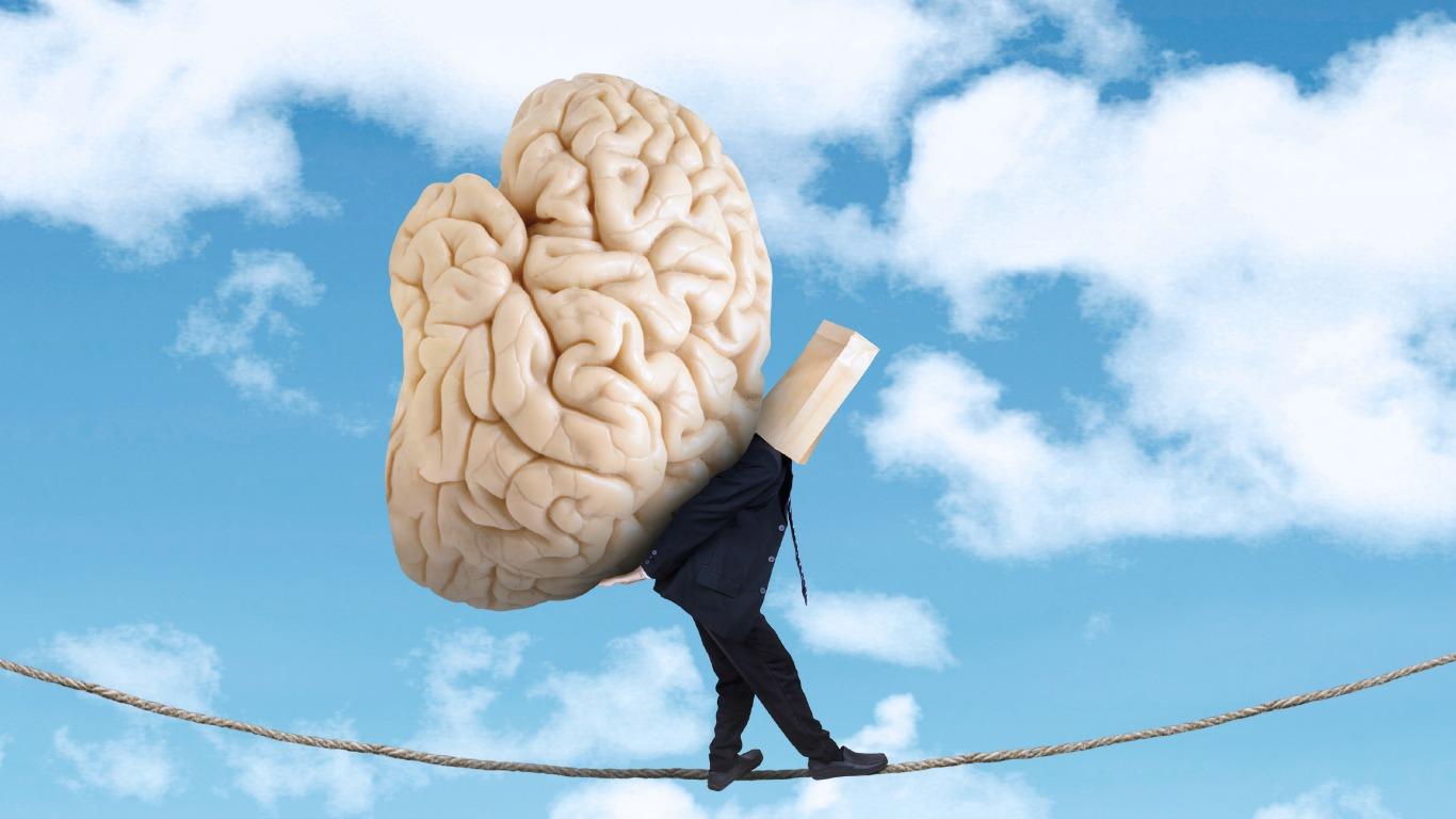 Großes Hirn, große Ideen