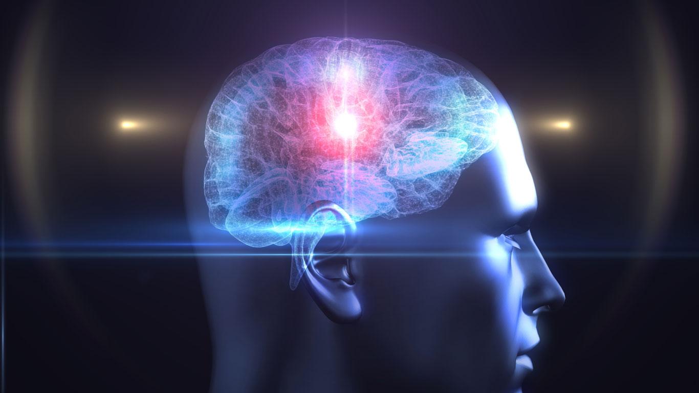 Manipulation im Gehirn