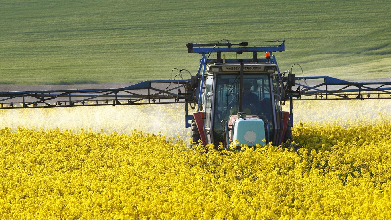 Globale Giftspritze: Jedes Jahr 140.000 Tonnen Pestizide in Europa
