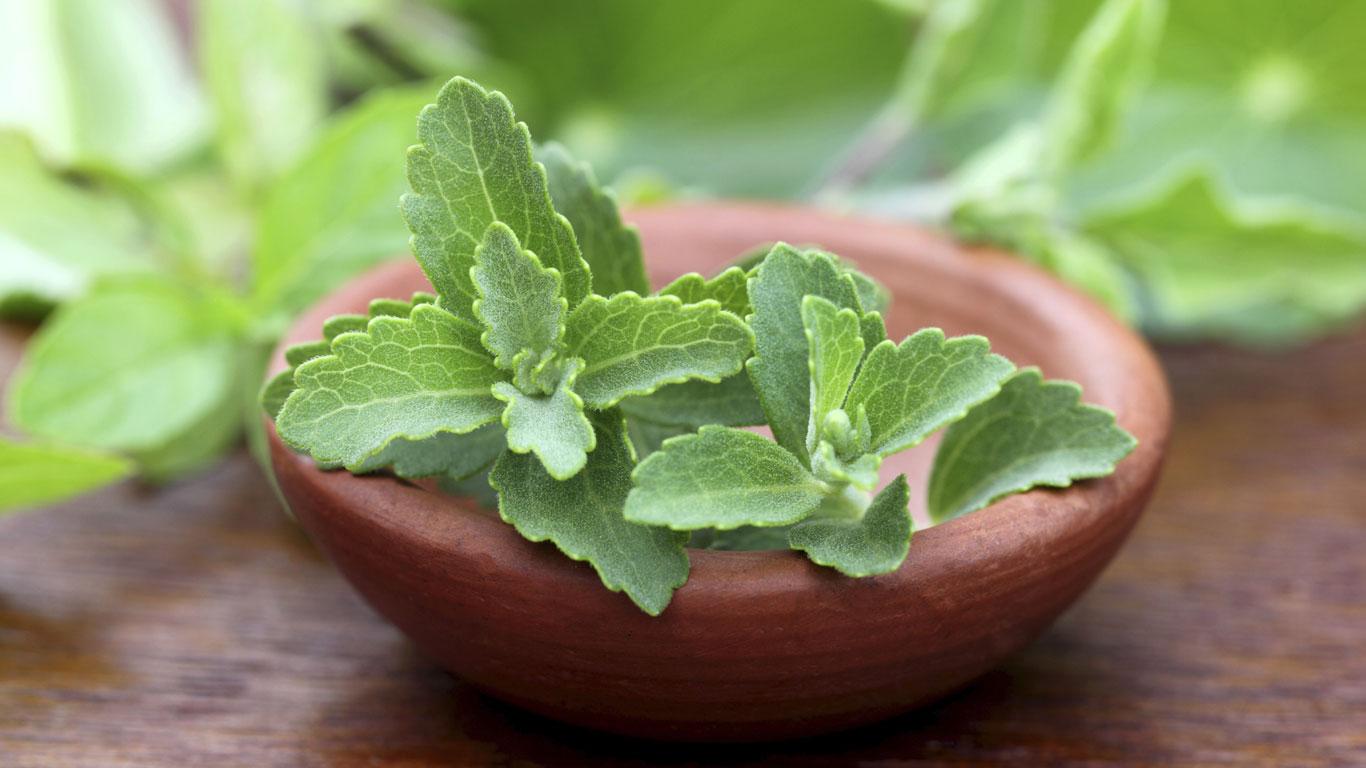 Stevia ist ein Naturprodukt