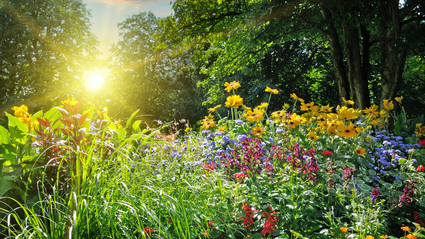 Heuschnupfen – Die Schattenseite des Frühlings