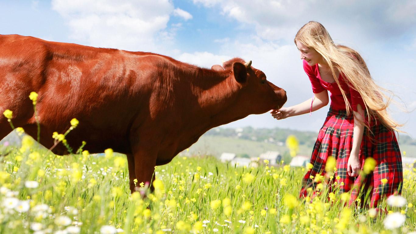 Veganismus: Essen oder Lebensweise?
