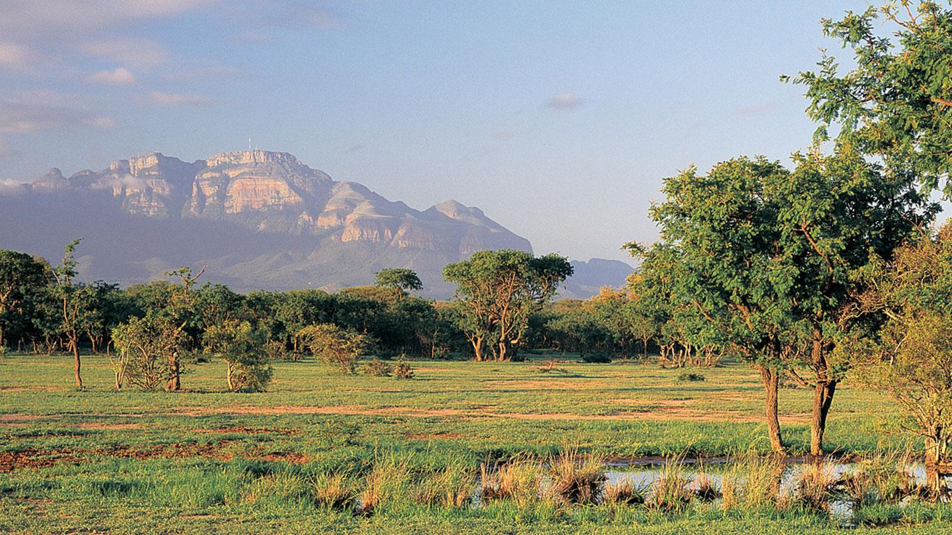 Gewollte Begegnung mit Tieren – Krüger Nationalpark in Südafrika