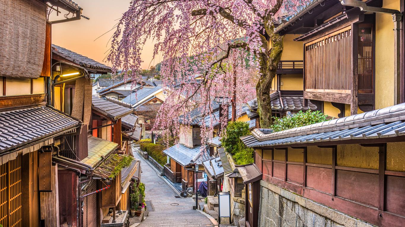 Die Schatzkiste Japans