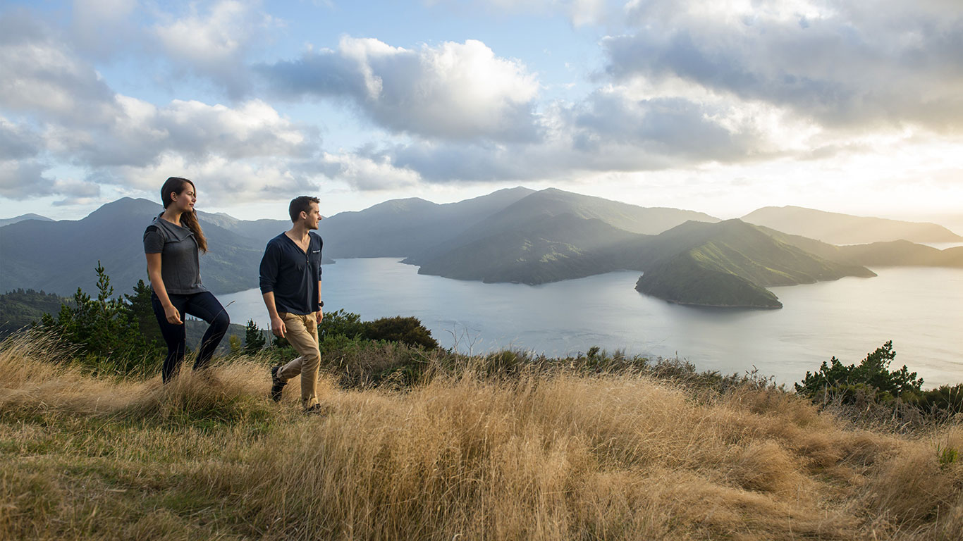 Queen Charlotte Track: Hiking Deluxe