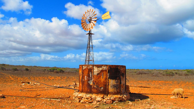 Australien: Schaf-Farm im Outback