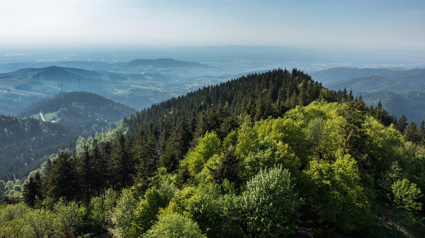 Belchen-Dreieck: Das vergessene Heiligtum der Druiden (Schwarzwald, Baden-Württemberg)